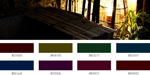 2013年秋冬の流行色2