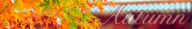 配色パターン:秋