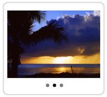 【WordPress】1つで4種類の効果の画像スライダー「Meta Slider」